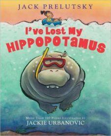 LostMyHippopotamus