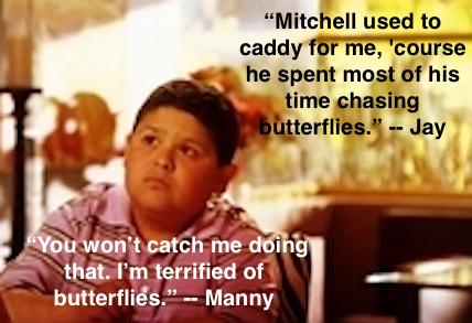 Manny butterflies