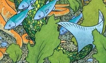fish girl 1 copy