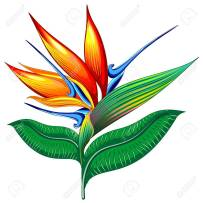 Bird of Paradise flower clip-art.  This California flower has a green stem and leaves, including a top leaf that tilts diagonally upward like a beak.  Above this are several bright orange petals that stick up like flames, and several blue spear-like petals.  The whole thing looks like a tropical bird with plumes on its head.
