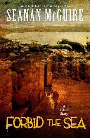 A tabby cat walks down a very sepia toned street, past 17th century houses.  Superimposed over this scene, over the top half of the cover, is the sea, with waves crashing.